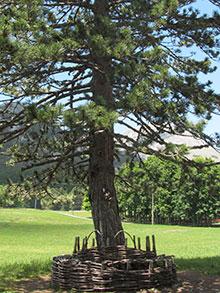 Национальный парк 'Ловчен' славится своей великолепной природой