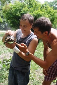 Даже черепаха вышла посмотреть на нашу работу