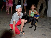 Даже черногорская собака пришла посмотреть, чем ты занимаемся…