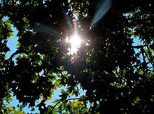 а солнце почти в зените