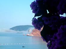 …насладиться ароматами цветов и прекрасными видами…